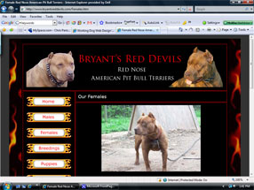 Bryant's Red Devils